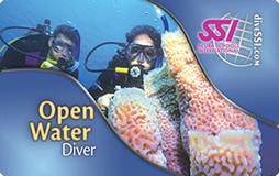 SSI Open Water Diver - Buceoastur.com